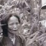 韓国人がベトナムに残した悲劇…ライダイハンを史実から消去画策…
