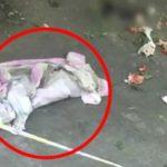 19歳女子大生が秘密出産した結果…4階の窓から投げ捨て新生児死亡し、批判殺到…