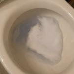 ネコのうんちをトイレに流してはいけない理由…知らなかったと話題に…