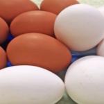 卵の色と値段の違いの理由…意外と知らない人が多かったと話題に…