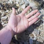 手のひらを写しただけでしょ!?→この写真の驚くべき真実、わかりますか??