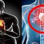 血管を綺麗にし心臓発作予防してくれる食品20選…これで健康的に食べて長生きできる?