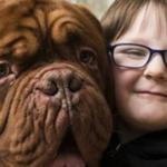 なぜか息子の右側ばかりを歩く飼い犬…ある日、両親は理由に気が付いた…