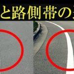 路肩と路側帯の違い…似ているようで違うと話題に…