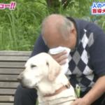 優秀な盲導犬の補助器具を外した直後、態度が豹変…その姿に感激・感動する…