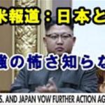 「日本が同盟国で良かった!」小野寺防衛大臣の発言にアメリカから感謝の声が殺到