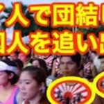 世界の観光地・タイで旭日旗が氾濫…韓国人「もうタイに行けないじゃないか!」