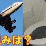 飛行機のトイレの仕組み…空に放出されているわけではなかった…
