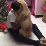 腫瘍の除去手術を受けた犬が退院…主人と愛犬の絆に思わず涙してしまう…