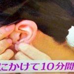 輪ゴムを耳に巻くと起きる効果…こんなに沢山の嬉しい効果があるなんて…